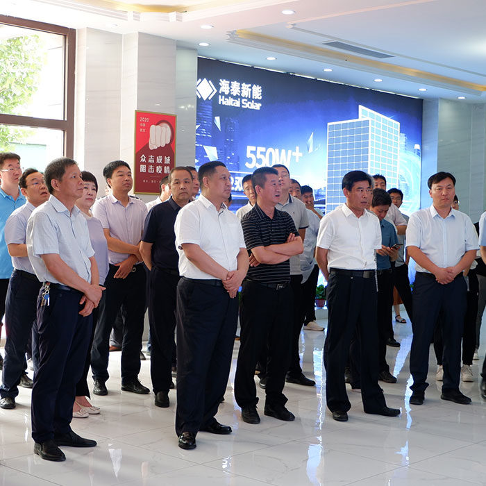 """Leaders of Hebei Provincial Development and Reform Commission inspected Haitai Solar """"Photovoltaic + Coal to Electricity"""" project"""